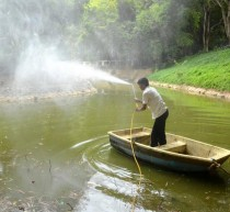 cleaning of Bangalore lakes