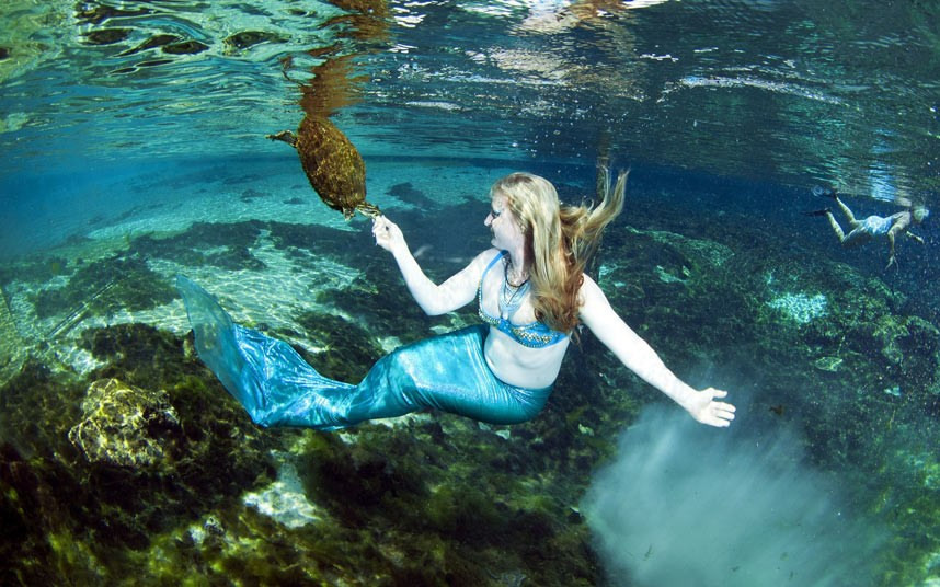 Real Sea Mermaids http://kinooze.com/2012/07/06/where-mermaids-live/