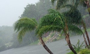 Tropical storm Issac