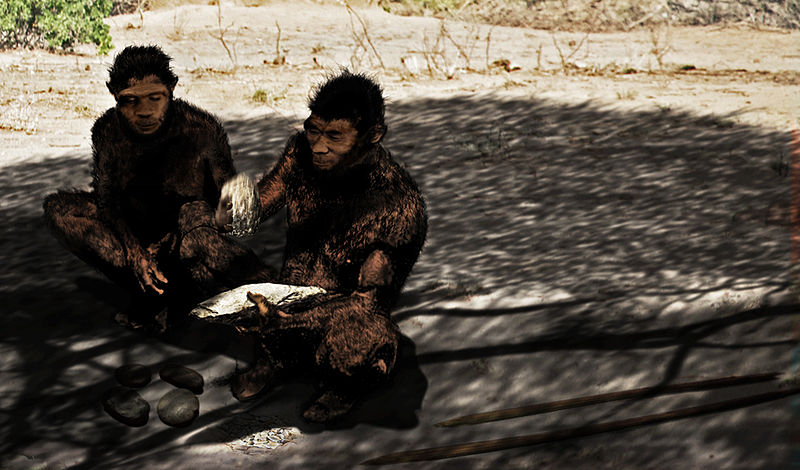 Homo_erectus - the second kind that had a bit of linguistic skills.