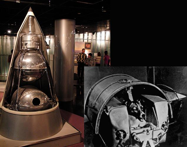 Sputnik 2(left), Laika, the dog(right)