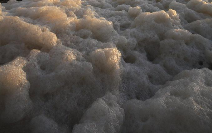 froth suds
