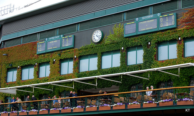 Wimbledon Women Finals