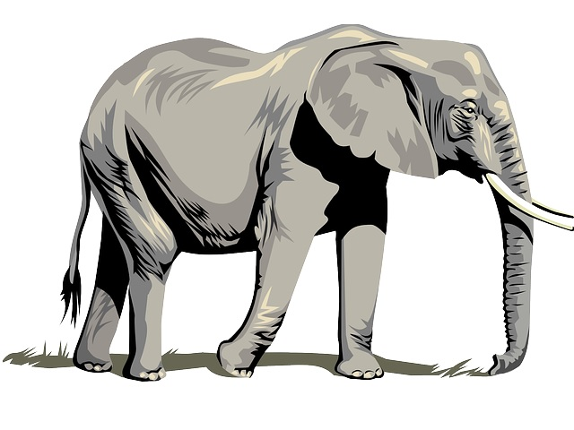 The large Elephant