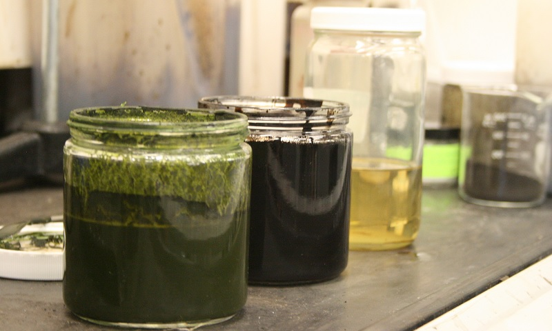 Progression of Algae slurry to refined bio-crude aka diesel fuel